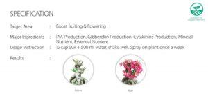 Flowering-Fertilizer