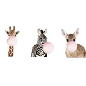 'Zebra, Giraffe, Deer' Frame (Set of 3)