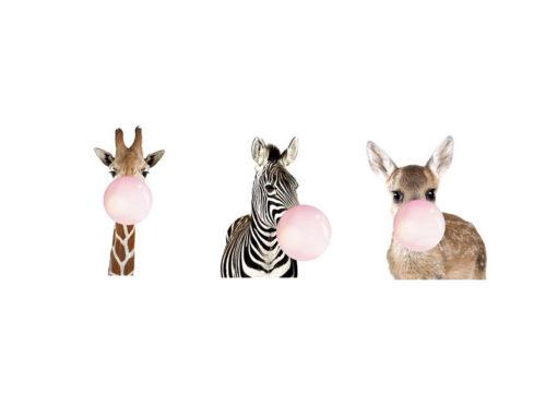 BFG-Zebra-Giraffe-Deer-Frame-4